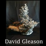 david-gleason