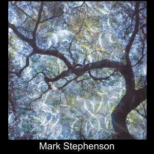 Mark Stephenson2