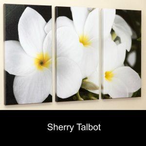 Sherry Talbot